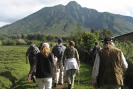 Hiking Tours in Rwanda